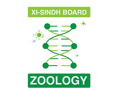 Zoology - XI First Year - Sindh Board