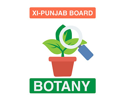 Botany - XI First Year - Punjab Board