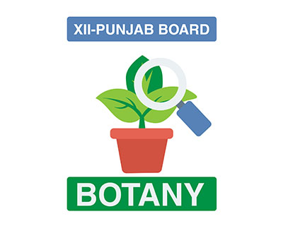 Botany – XII Second Year – Punjab Board