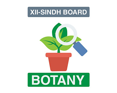 Botany - XII Second Year - Sindh Board